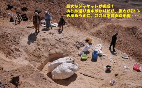 恐竜発掘ー20